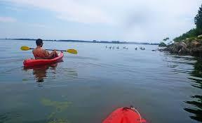 kayakthebay